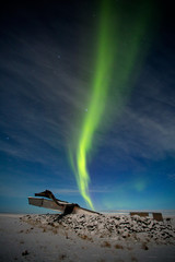 The aurora borealis or the Northern light at Skaftafell Iceland