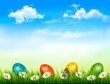 Easter background. Easter eggs laying in green grass with daisy