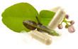 concept phytothérapie, la santé par les plantes - 62154928