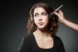 Make-up Applying closeup. Cosmetic Powder Brush