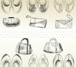 fashion  handbags and shoes. Hand drawn illustration.