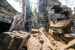 Ta Prohm temple at Angkor Wat, Siem Reap, Cambodia.