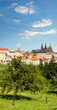 Red roofs and gardens of Prague in summer