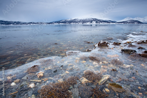 Frozen fjord shore in winter Norway