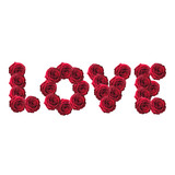 Love word made from red roses