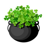 Leprechaun's pot with shamrock. Vector illustration.