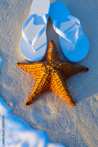 Art Summer holidays sea beach  background