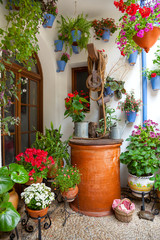Courtyard with Flowers decorated and Old Well - Cordoba Patio
