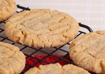 Closeup of Peanut Butter Cookies