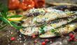 Grilled sardine - 62170503