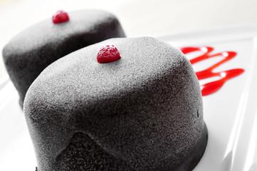 frozen chocolate dessert