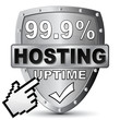 HOSTING UPTIME 99.9% ICON