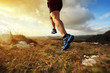 canvas print picture - Healthy trail run