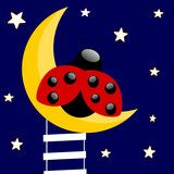 Ladybug sitting on the moon in the blue background