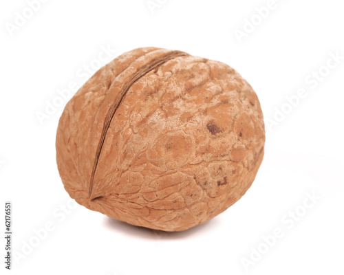 Single walnut close up.