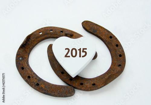 2015,année chance,porte-bonheur,fer à cheval