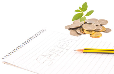 Concept image of financial saving growth