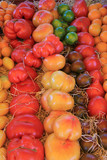 Tomatoes in various colors