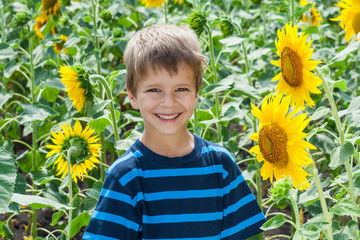 Smiling boy between sunflower