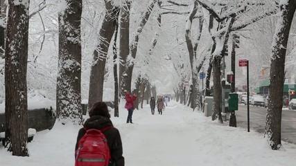 Snowing in New York City sidewalk