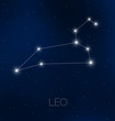 Leo constellation in night sky