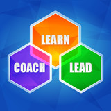 learn, coach, lead in hexagons, flat design