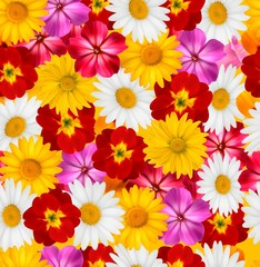 Flower background. Vector.