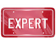 Expert Word License Plate Car Mechanic Engineer Technician Repai