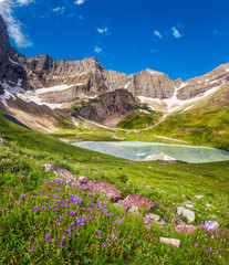 Cracker Lake and wild lilies in Glacier national park, Montana