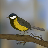 Bird tit on branch in vector