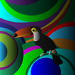 Decorative Toucan