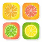 Citrus fruit icons