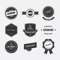 Set of retro badges and labels