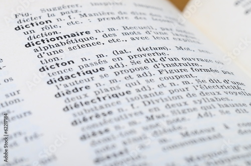 French Dictionary at the word Dictonary