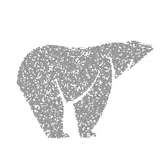 Vector image of an bear design