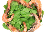 Fresh boiled shrimps with basil.