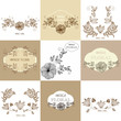 Set of  Vintage floral background