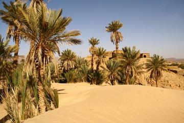 premières dunes du Sahara