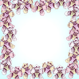 floral frame with  line drawing orchids