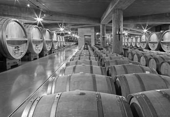 Indoor of modern wine cellar in Slovakia