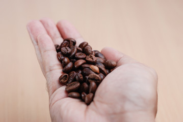 Hand Hold The Coffee Bean