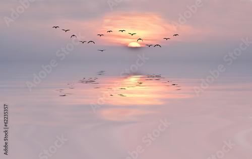 amanecer de colores suaves