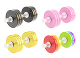 Adjustable metal dumbbell isolated