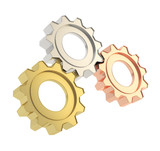 Set of a cogwheel gears