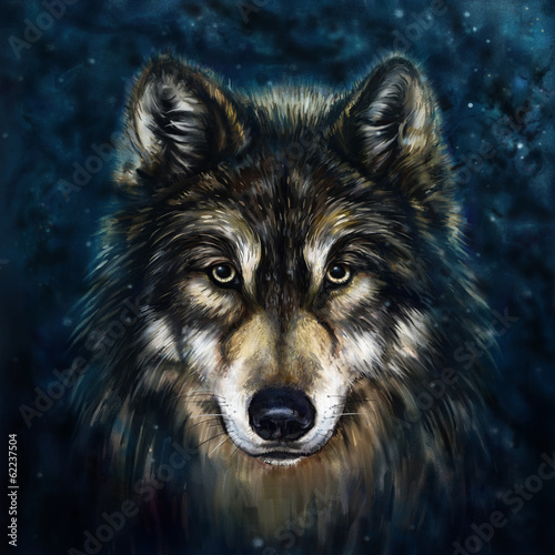 wolf front - 62237504