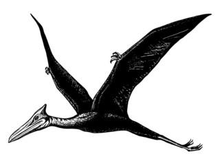 pterodactyl - Quetzalcoatl