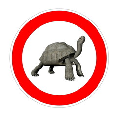 Turtle speed limit