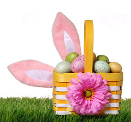 Easter basket with colorful eggs and bunny ears
