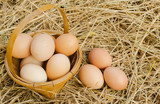 Many eggs in the basket on the floor, natural straw.