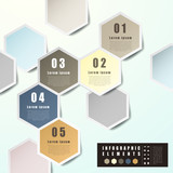 abstract hexagon label infographics